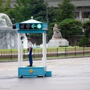Korean Presidential Police
