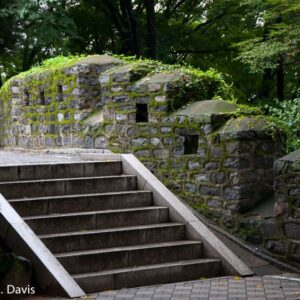 Steps Near Seoul Tower