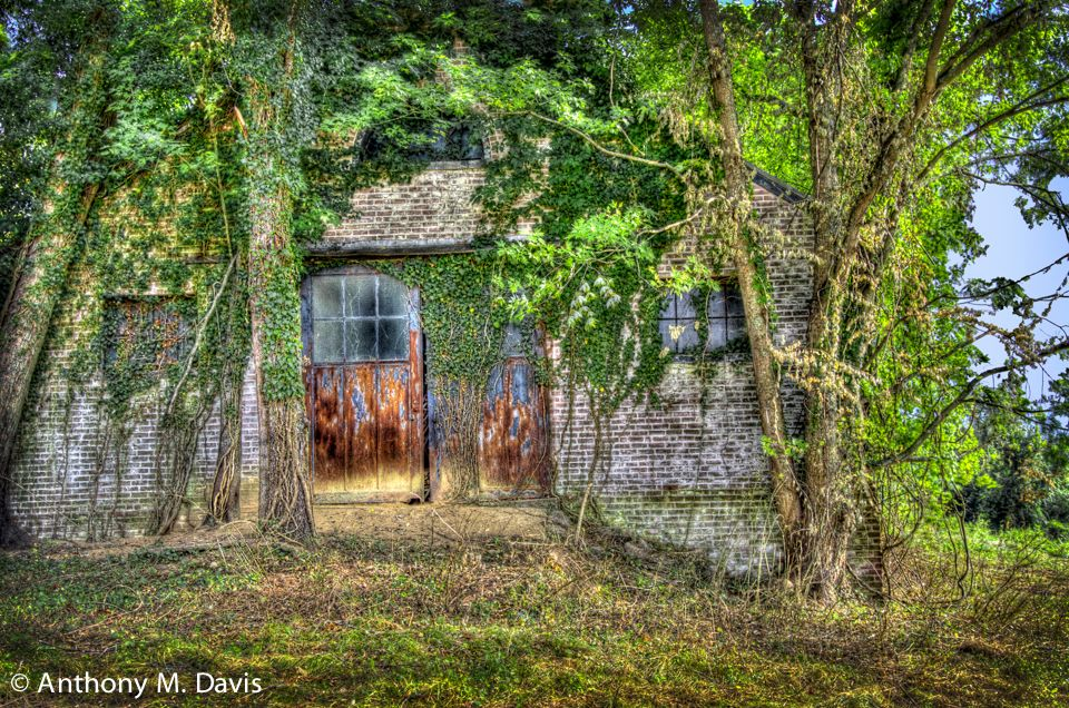 Abandoned stables