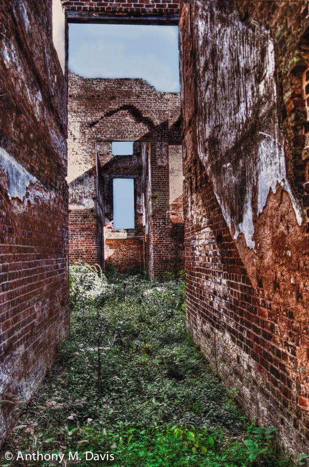Barboursville Ruins No. 2