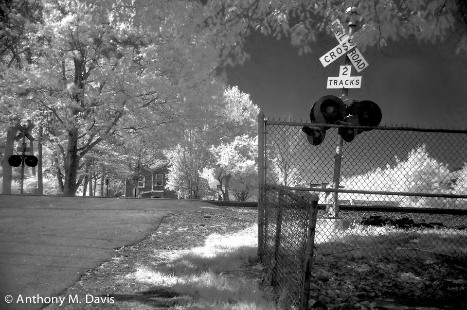 two tracks - infrared image